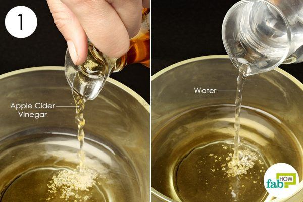 dilute acv in water to treat ear infection