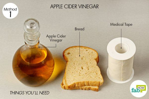 things you'll need for using apple cider vinegar to get rid of corn