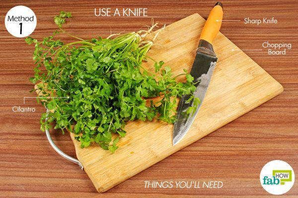things you'll need to chop cilantro using a knife