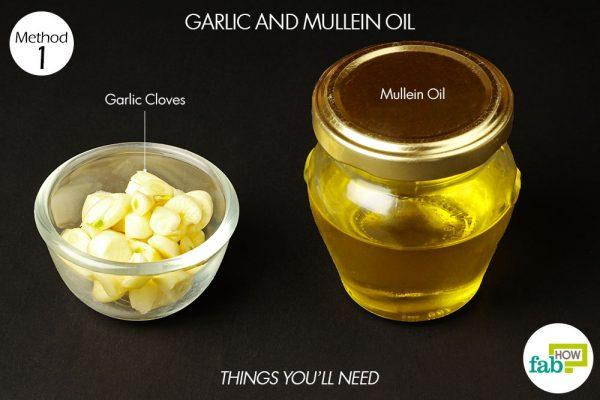 garlic and mullein oil for ear infection