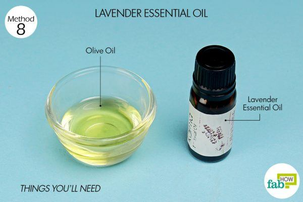 things you'll need to treat a bee sting using lavende oil