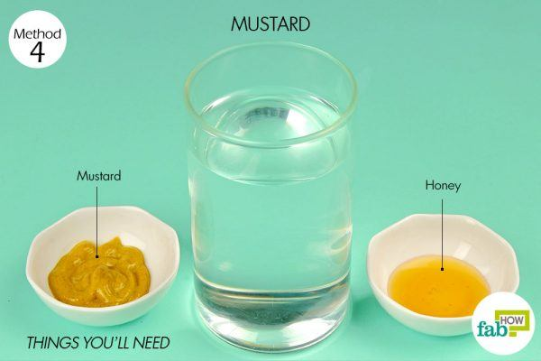 things you'll need using mustard to treat indigestion
