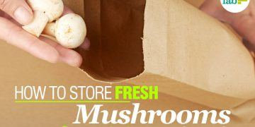 feat how to store mushroom