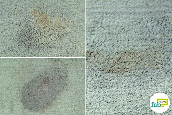 final basic cleaning to remove sauce stains from carpet