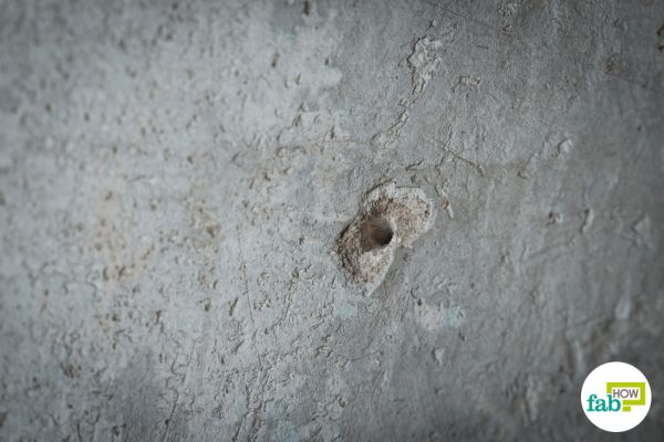 repair any holes in the walls