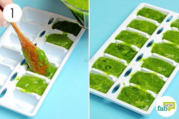 freeze pureed vegetables