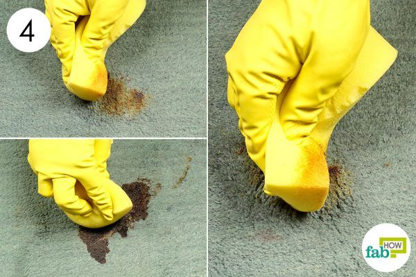 scrub the stain with a sponge