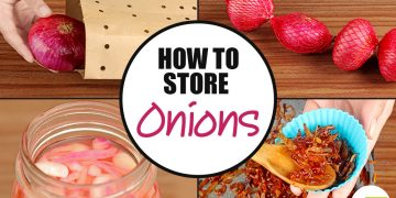 feat how to store onions