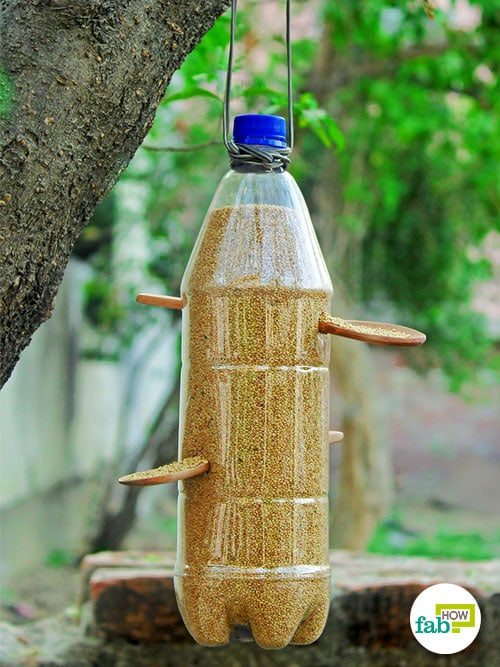 bird feeder made with plastic bottle