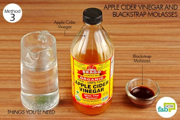things you'll need for using apple cider vinegar and blackstrap molasses to increase your hemoglobin