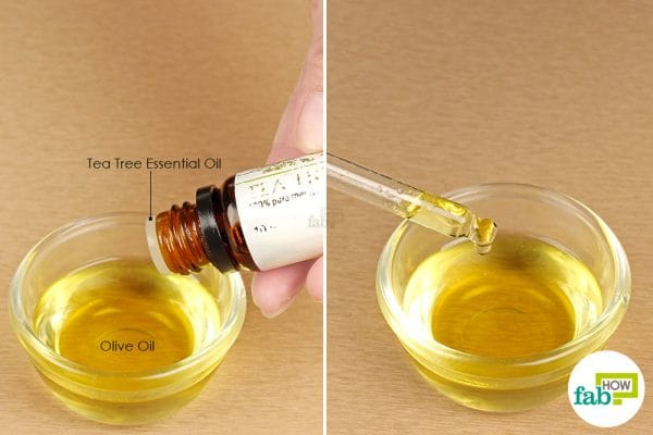 dilute tea tree oil with olive oil and apply