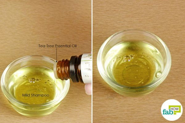 add tea tree oil to shampoo and use