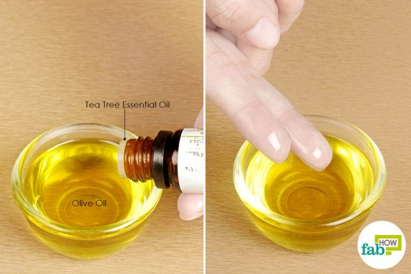 mix tea tree oil in olive oil and apply
