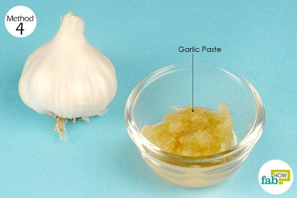 use garlic paste