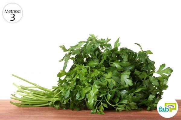 much on parsle to get rid of garlic breath