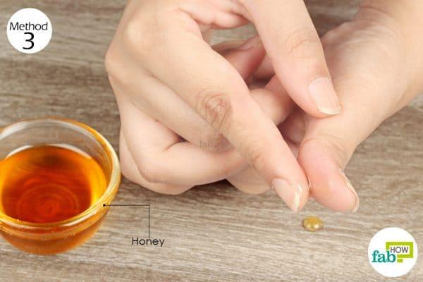 coat the bleeding cut with honey