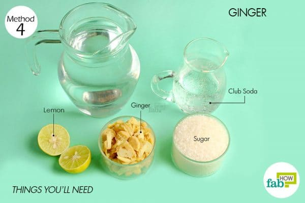 things you'll need to make ginger ale