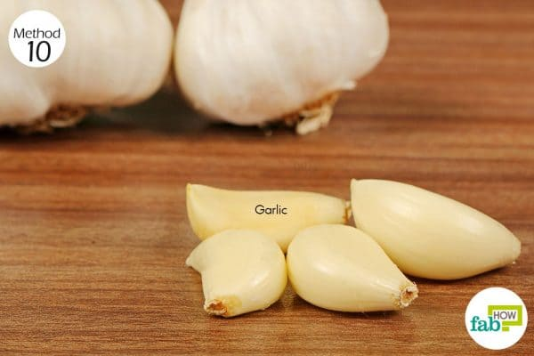 consume 2 to 3 garlic cloves daily