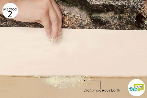 Sprinkle food-grade diatomaceous earth to get rid of silverfish