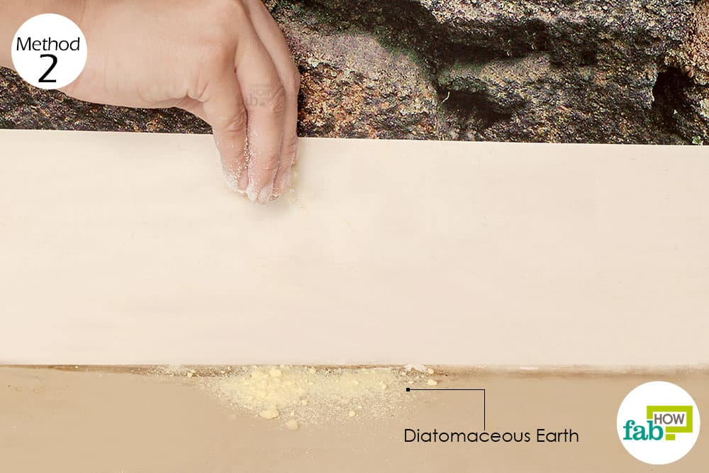 Diatomaceous Earth Dry Dog Food