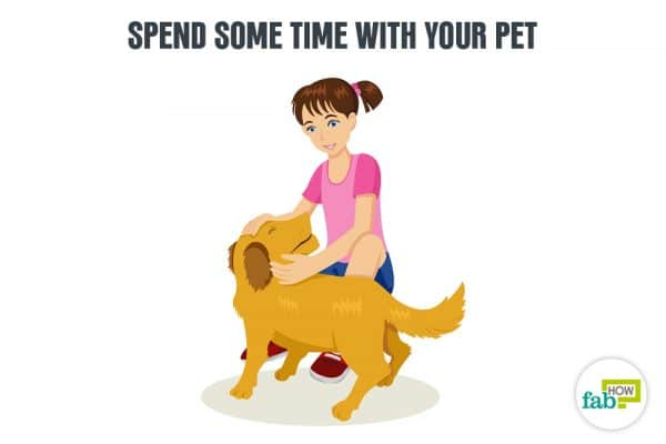 spend time with your pet to enjoy yourself alone