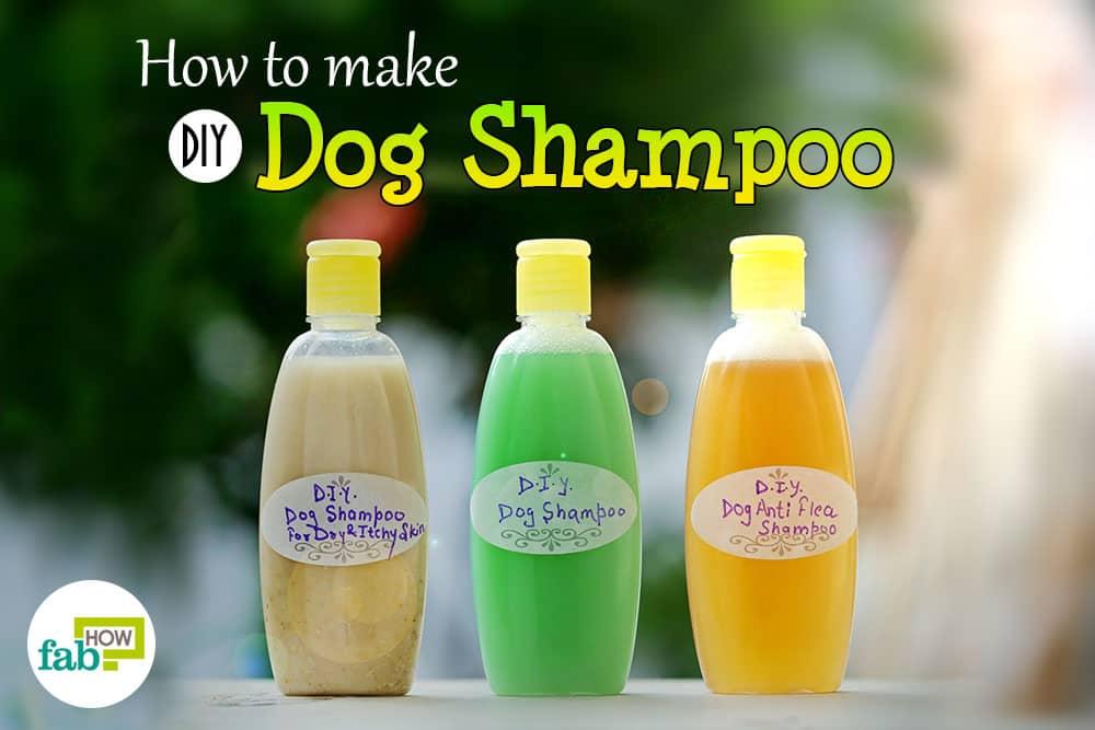 feat diy dog shampoo