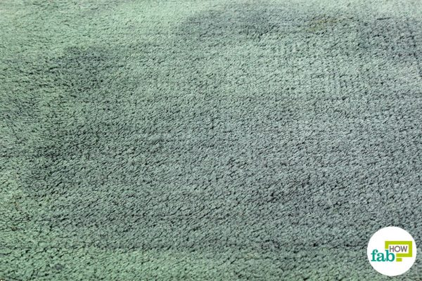 Try out this clever cleaning hack for complete stain removal from your carpet