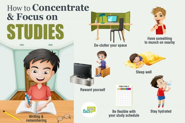 intro how to concentrate on your studies