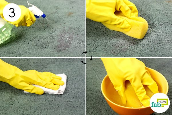 Spray the solution on the stain and pat dry