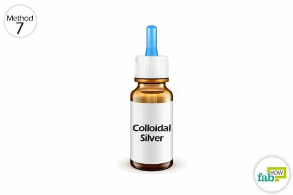 Collodial silver is a solution in your pets wet food or drinking water to help treat yeast infection in dogs and other pets
