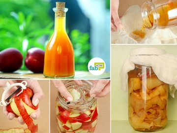 feat make apple cider vinegar