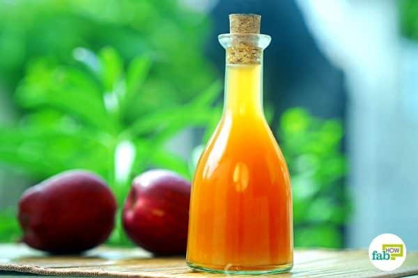 intro make apple cider vinegar