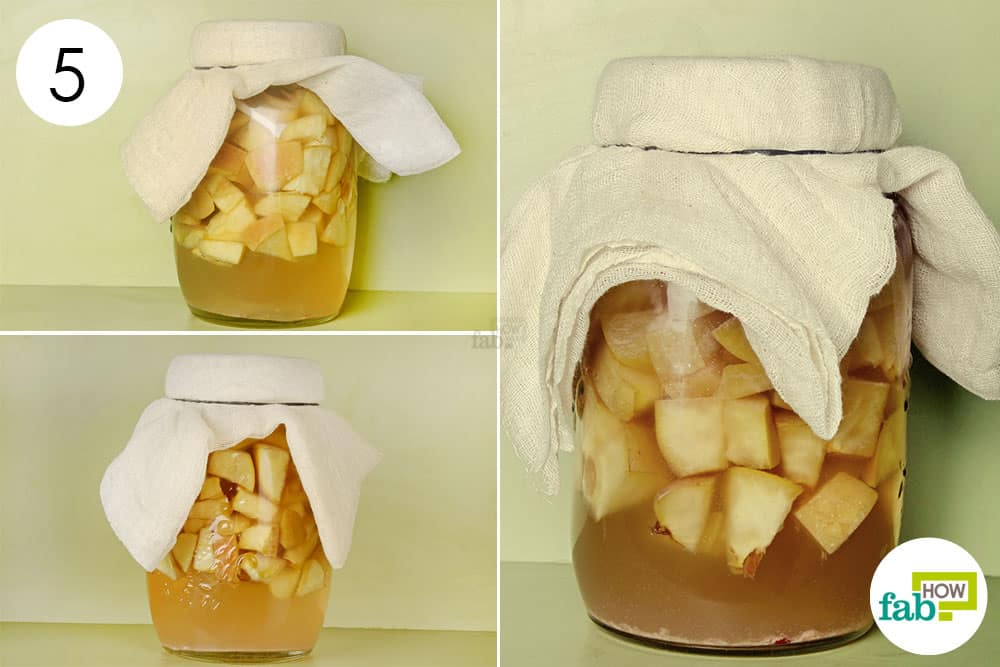 Check the jar at regular intervals to track the fermentation to make apple cider vinegar