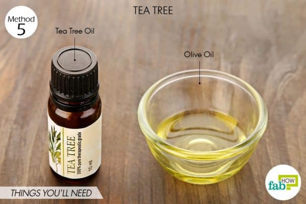 Things needed to cure yeast infection in dogs and other pets using tea tree oil