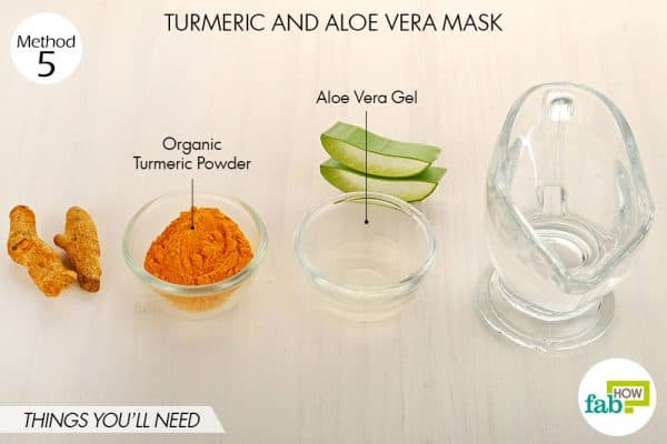 Things needed to make DIY turmeric and aloe vera mask for acne and pimples