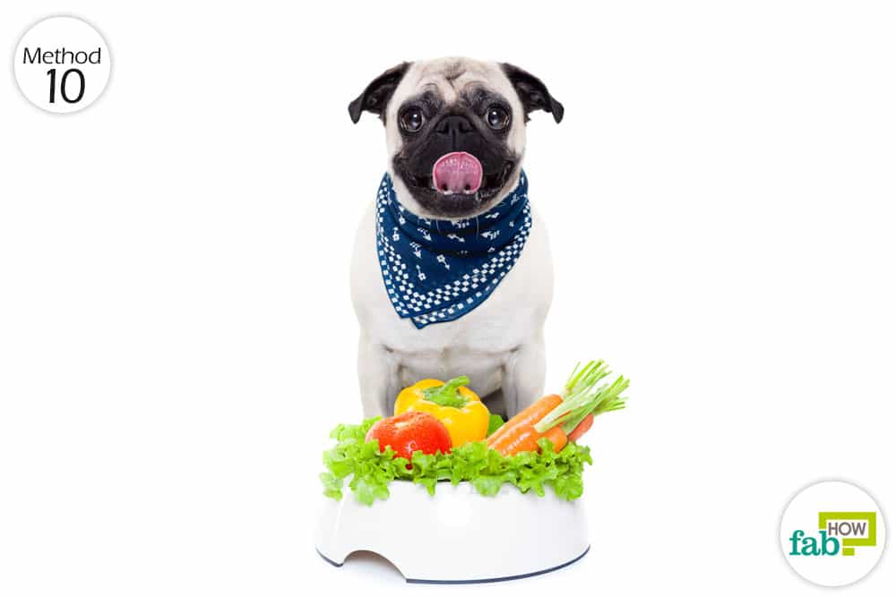 change diet to treat itching in dogs