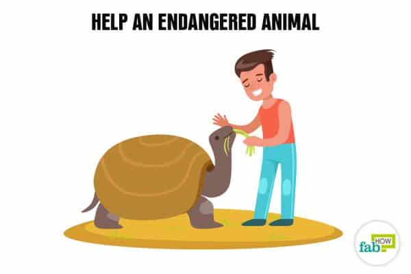 Create your bucket list and help an endangered animal