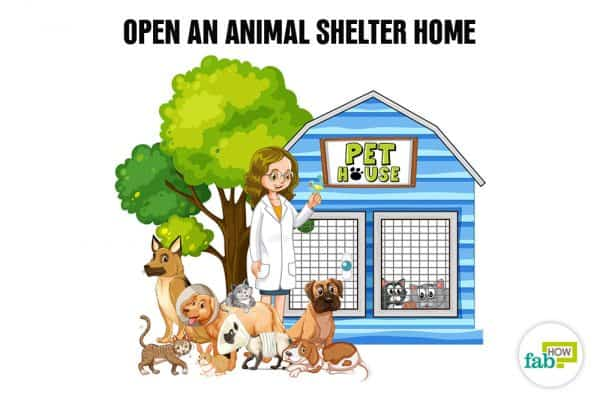 Create your bucket list and open an animal shelter home