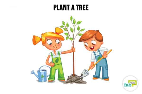 Create your bucket list and plant a tree