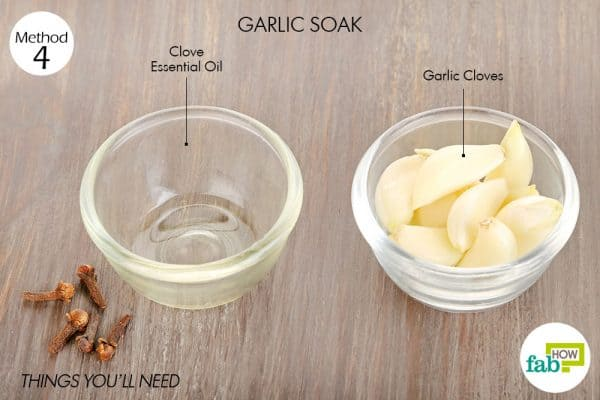 Things needed to make soak using garlic for tooth-related troubles