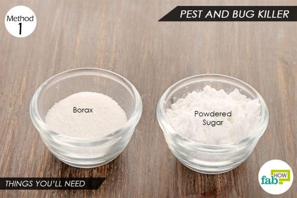 Things needed to use borax as pest killer