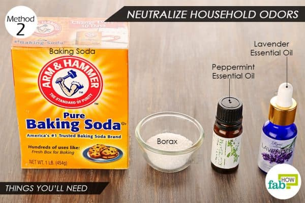 Things needed to use borax to neutralize household odors