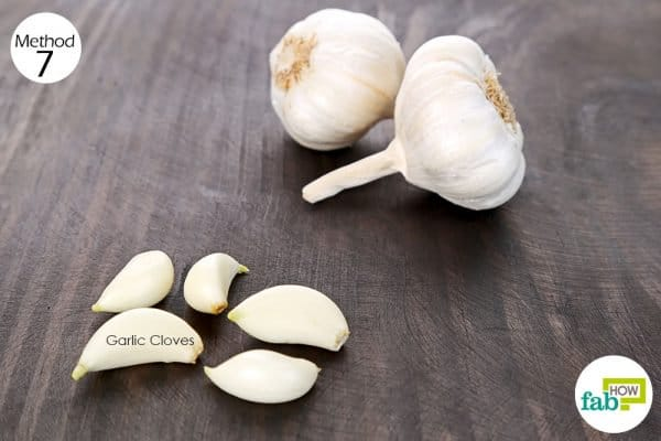 Use garlic for health-to regulate your blood glucose levels