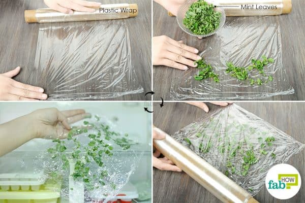 Vacuum seal the mint leaves in plastic wrap and freeze to preserve and store mint