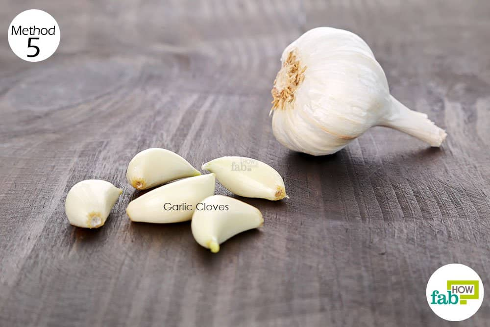 Use garlic for health-to treat bacterial vaginosis