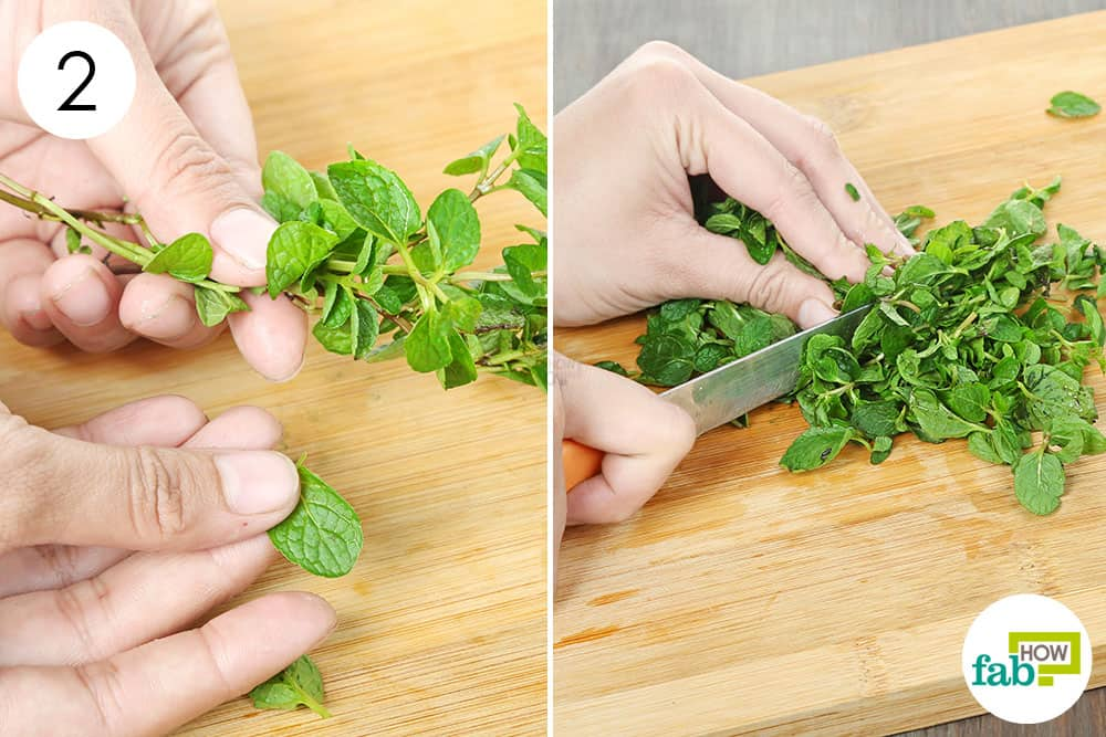 Separate and chop up the mint leaves to preserve and store mint