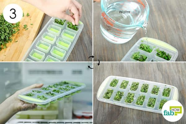 Fill an ice tray with the chopped mint leaves and distilled water to preserve and store mint