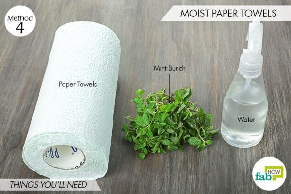 things needed to store mint-using moist paper towels