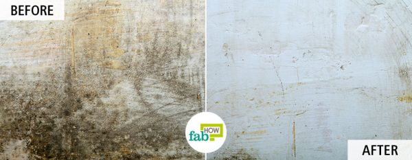 get rid of mold and mildew by using hydrogen peroxide