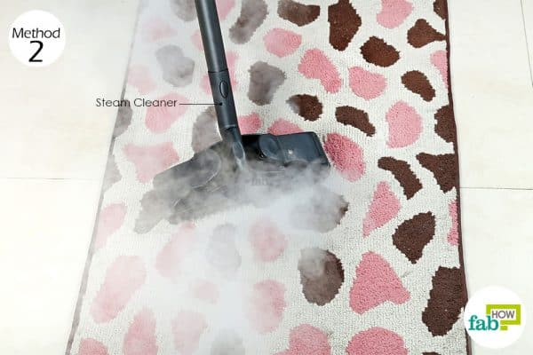 use steam cleaner to clean a rug
